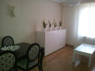 Adorable 1 bedroom Apartment in Province of Salamanca - Province of Salamanca vacation rentals