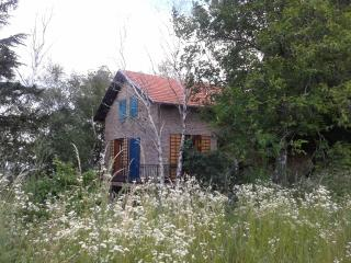 Enjoy comfortable accommodation in the woods - Novi Sad vacation rentals