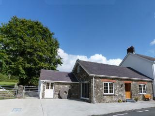 Yr Efail Brechfa Mountain Cottage - 100109 - Brechfa vacation rentals