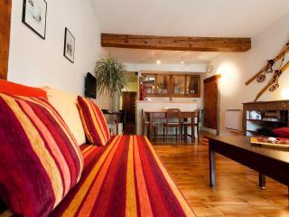 Gîte de charme «En face du Palais...» - Grenoble vacation rentals