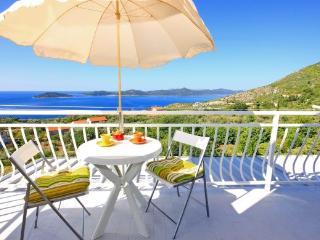 Villa Bon Vivant Brsecine 15 pax - Trsteno vacation rentals