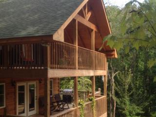 $75 week nights $645 week Cyber Mon. Good all year - Sevierville vacation rentals