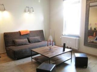 Eclectic 1 bedroom in central Brussels - 1378 - Brussels vacation rentals