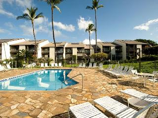 Nice House with DVD Player and Parking - Kihei vacation rentals