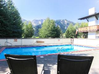 Modern and stylish home near the ski lifts with a hot tub! - Ketchum vacation rentals