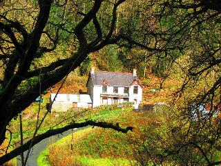 4 bedroom Cottage with Internet Access in Boncath - Boncath vacation rentals