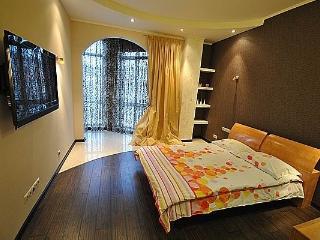 CR101cOdessa - Apart Grech Odessa - Odessa vacation rentals