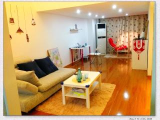 Nice two-story apartment in Nanjing,China - Jiangsu vacation rentals