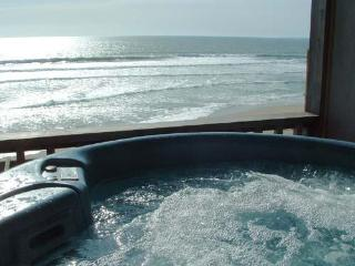 468/Captain's Cove *HOT TUB/OCEAN FRONT* - Moss Landing vacation rentals