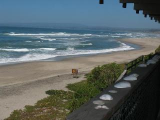 763/Sand Dollar *OCEAN FRONT* - Santa Cruz vacation rentals
