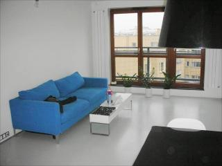 Comfortable apartement in Praga KĘPNA 2 - Warsaw vacation rentals