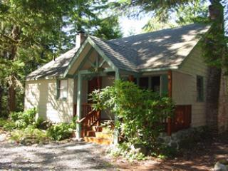 Pine River Cabin, cozy, riverfront, yard, fireplace, hot tub. Dogs ok. - Brightwood vacation rentals