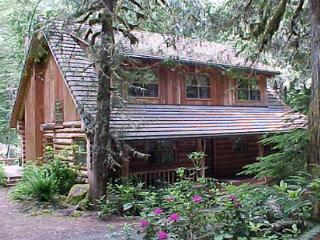 Bear Den Log Cabin, classic family getaway, walk to Salmon River. Dogs ok. - Brightwood vacation rentals