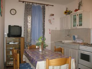 CINDRIC(421-1046) - Palit vacation rentals