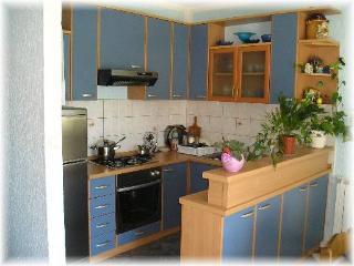 Rajka Lopar(448-3261) - Lopar vacation rentals