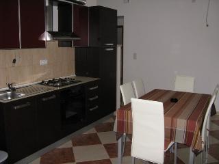 Marinko Baskovic(450-3803) - Splitska vacation rentals
