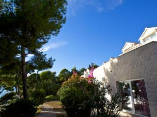 Cozy 1 bedroom House in Milna - Milna vacation rentals