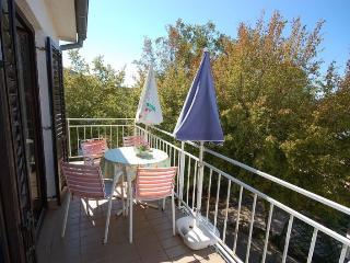 Cosabic(918-2013) - Njivice vacation rentals