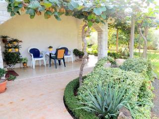 Drpic R.(971-2142) - Malinska vacation rentals