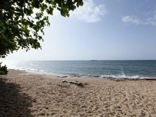 Private Beachfront Chalet - Isabela vacation rentals