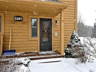 Clean, convenient and comfortable and all in the same place! - Canaan Valley vacation rentals