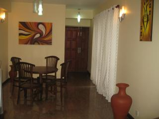 Wellington Residencies Fully Furnished Apartment - Colombo vacation rentals