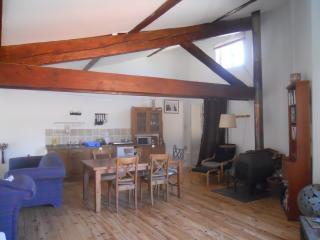 Deluxe loft studio - Lagrasse vacation rentals