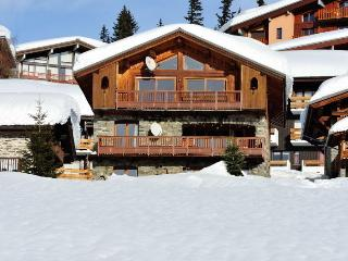 Nice Condo with Television and Microwave - La Rosiere vacation rentals