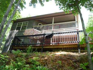 Mountain Reatreat - Tryon vacation rentals