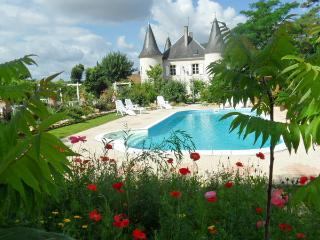Gite IRIS (with apartment) north of Parthenay - Parthenay vacation rentals