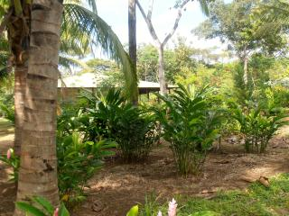 Tropical Oasis for Large Group Gatherings - Mombacho Volcano Nature Reserve vacation rentals