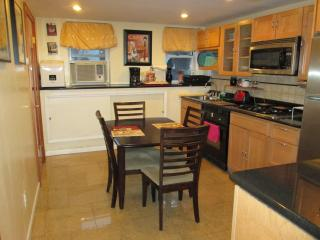 Garden Studio In Beautiful Townhouse - Brooklyn vacation rentals