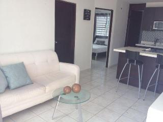 Closest 1BR to airport & beach-WIFI, TV, Parking - Carolina vacation rentals