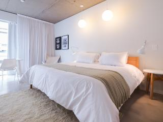 Spacious Brand New Studio in San Telmo (ID#1929) - Buenos Aires vacation rentals