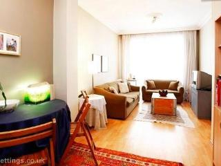 double room close to Taksim Istanbul - Istanbul vacation rentals