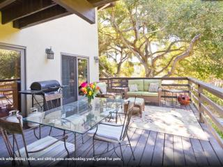 Garden by the Sea - Kids and Pets Yay! Beach near! - Santa Barbara vacation rentals