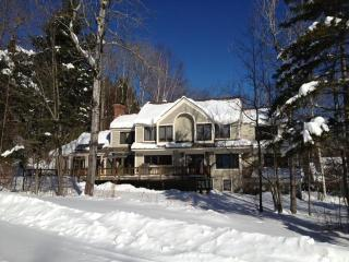 Luxurious High Meadow Home - Bondville vacation rentals