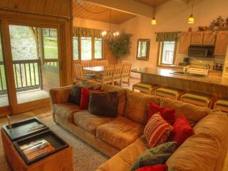 Phoenix 102 - Mountain Area - Steamboat Springs vacation rentals
