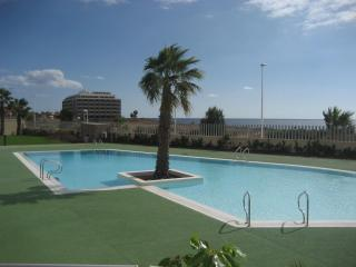 El Medano, Canary Islands, off the beach! - Coslada vacation rentals