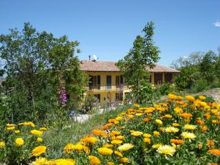 Nice Bed and Breakfast with Internet Access and Housekeeping Included - Bistagno vacation rentals