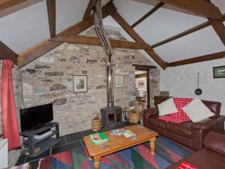 Preseli Hills Cottage - Pontfaen vacation rentals