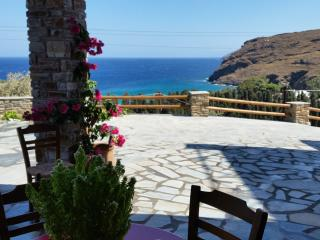 Nice Apartment with A/C and Television in Andros - Andros vacation rentals