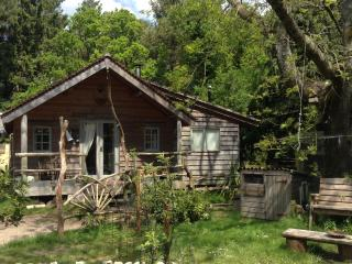 Beautiful Cabin with Deck and Hot Tub - Wareham vacation rentals
