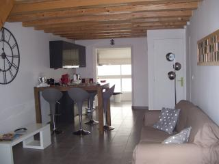 Nice Condo with Television and DVD Player - Saintes-Maries-de-la-Mer vacation rentals