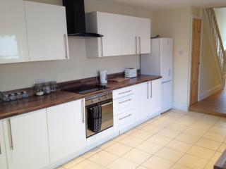 Retreat In The City - Sky Tv - Ultimate Luxury - Cardiff vacation rentals