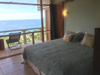 Palace of Peace Ocean View B&B - Playa Potrero vacation rentals