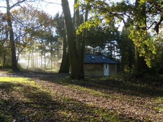 The Cottage, Dunster Lodge, Burton by Lincoln - Lincoln vacation rentals