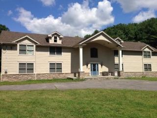 Catskill Vacation Retreat on 40 Acres - Medusa vacation rentals