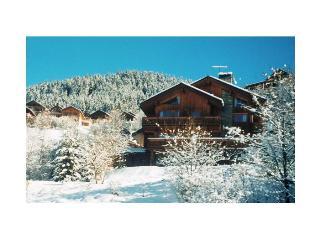 ski/meribel/chalet-bonbon - Meribel vacation rentals