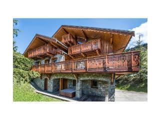 Chalet Des Titans - Meribel vacation rentals